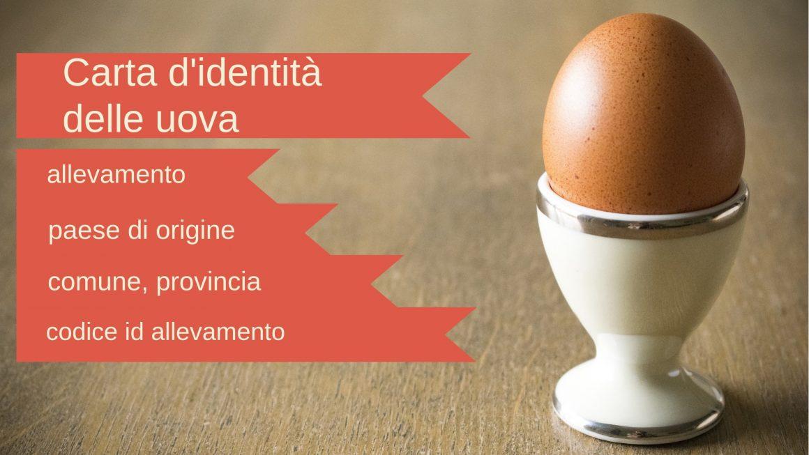Etichette uova galline: come leggerle, cosa significano