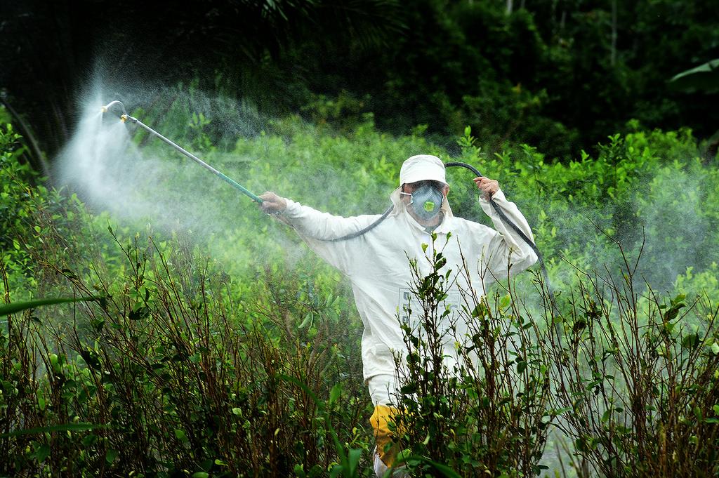 Glifosato: quanto è pericoloso per salute e ambiente?