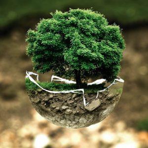 Giornata Mondiale dell'Ambiente: #BeatAirPollution